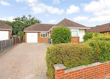 Thumbnail 3 bed detached bungalow to rent in Testlands Avenue, Rownhams