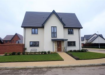Thumbnail 4 bed semi-detached house for sale in Minster Road, Daventry