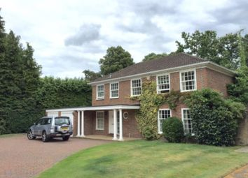 Thumbnail 4 bed detached house to rent in Redcourt, Woking, Surrey