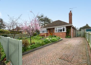Thumbnail 2 bed detached bungalow for sale in Mount View Road, Winchester