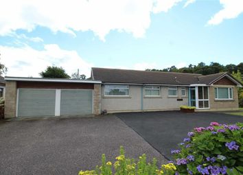 Thumbnail 4 bed detached bungalow for sale in 15, Cherry Park, Inverness