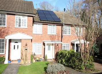Thumbnail 2 bed terraced house for sale in 62 The Dell, East Grinstead, West Sussex
