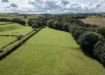 Thumbnail Land for sale in Land At Chalkfoot Farm, Cumdivock, Dalston, Carlisle, Cumbria