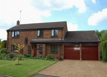 Thumbnail 4 bed detached house for sale in The Laurels, Moulton, Northampton