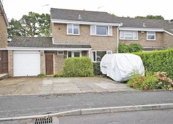 Thumbnail 3 bed terraced house to rent in Elmers Way, Bransgore, Christchurch