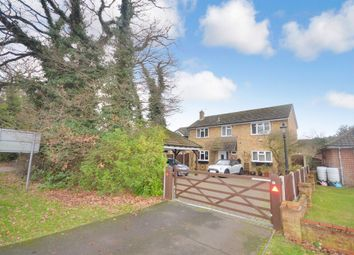 Thumbnail 4 bedroom detached house for sale in Cressing Road, Braintree