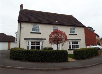 Thumbnail 4 bed detached house to rent in Billesdon Close, Leicester