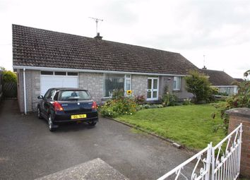 Thumbnail 3 bedroom detached bungalow to rent in Barban Hill, Dromore