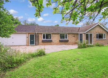 Thumbnail 3 bed bungalow for sale in Mill Hill, Weston Colville, Cambridge