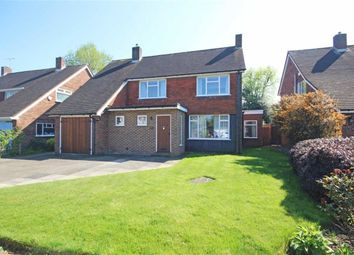 Thumbnail 3 bed detached house for sale in Pine Wood, Sunbury-On-Thames
