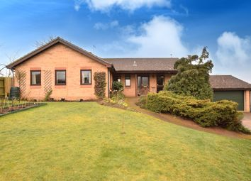 Thumbnail 4 bed bungalow for sale in School Road, Waldringfield