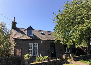 Thumbnail 4 bed cottage to rent in Rosemill Road, Bridgefoot, Dundee