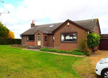 Thumbnail 4 bed property to rent in Little Brington, Northampton