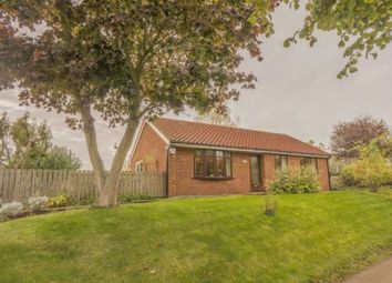 Thumbnail 3 bed detached bungalow for sale in Water Lane, West Halton, Scunthorpe