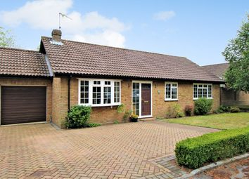 Thumbnail 3 bed detached bungalow for sale in The Sands, Whitehill, Hampshire