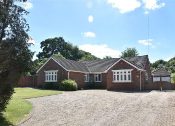 Thumbnail 4 bed detached bungalow for sale in Tadley Hill, Tadley, Hampshire
