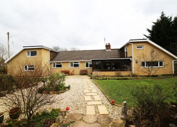 Thumbnail 6 bed property for sale in Muxbeare Lane, Willand, Cullompton
