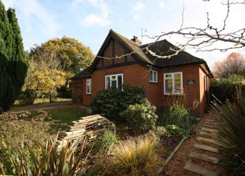 Thumbnail 4 bed bungalow to rent in Kings Road, Cranleigh