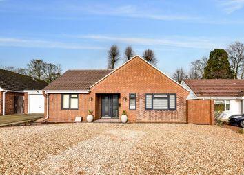 Thumbnail 4 bed detached bungalow for sale in Foyle Park, Basingstoke