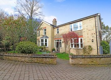 Thumbnail 4 bed detached house to rent in The Wilderness, St. Ives, Huntingdon