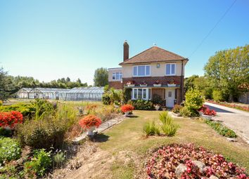 Thumbnail 4 bed detached house to rent in Bell Lane, Birdham
