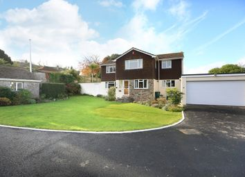 Thumbnail 4 bedroom detached house for sale in Belle Vue Road, Plymouth