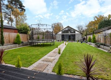 Thumbnail 5 bed detached bungalow for sale in Hatch Ride, Crowthorne, Berkshire, Berkshire