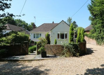 Thumbnail 3 bed detached bungalow for sale in Springwell Road, Beare Green, Dorking