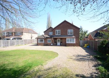 Thumbnail 5 bed detached house to rent in Park Lane, Charvil, Reading