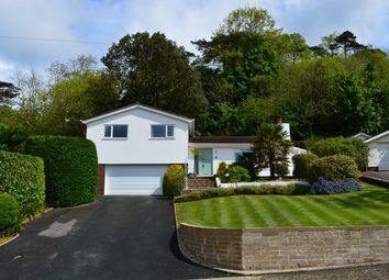 Thumbnail 4 bed detached house for sale in Brunel Park, Torquay