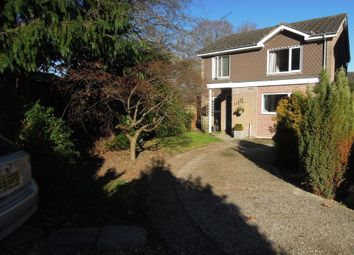 Thumbnail 4 bed detached house for sale in Westering, Romsey