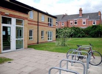 1 bed property to rent in Carholme Road, Lincoln LN1