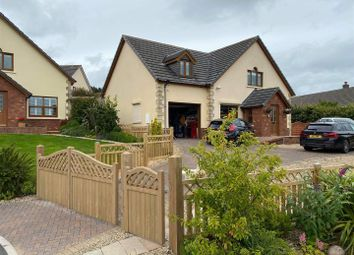 Thumbnail 4 bed detached house for sale in Trem Y Cwm, Llangynin, St Clears