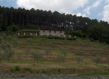 Thumbnail 4 bed villa for sale in Compitese, Lucca (Town), Lucca, Tuscany, Italy