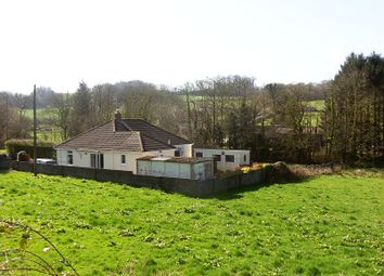 Thumbnail 2 bed detached bungalow for sale in Porthyrhyd, Carmarthen, Carmarthenshire