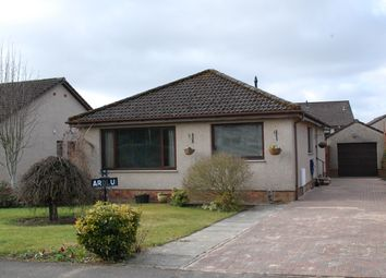 Thumbnail 2 bed detached bungalow for sale in New Road, Blairgowrie
