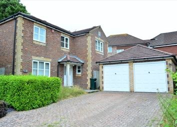 Thumbnail 4 bed detached house to rent in Patcham Grange, Patcham, Brighton