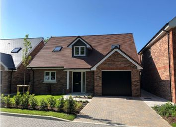Thumbnail 3 bed detached bungalow for sale in Humphrey Place, Potters Gate, Chichester