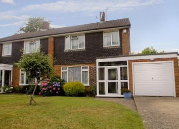 Thumbnail 4 bed semi-detached house to rent in Scotts Way, Tunbridge Wells