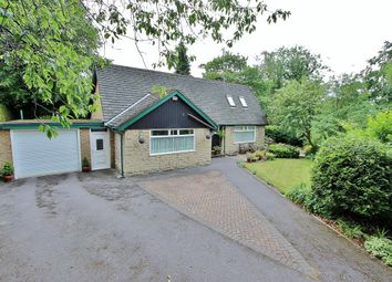 Thumbnail 4 bed detached house for sale in Endcliffe Vale Road, Endcliffe, Sheffield