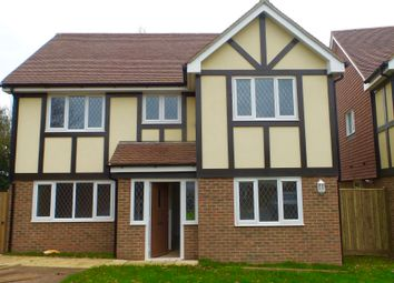 Thumbnail 4 bed detached house to rent in Paddock View, Horsebridge