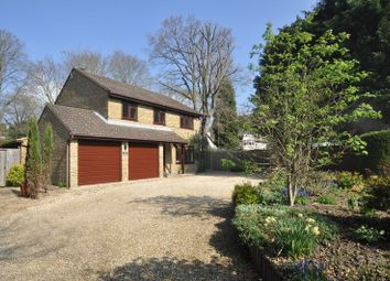 Thumbnail 4 bed detached house for sale in Ferniehurst, Camberley