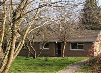 Thumbnail 3 bed bungalow to rent in Dillichip, Friars, Jedburgh
