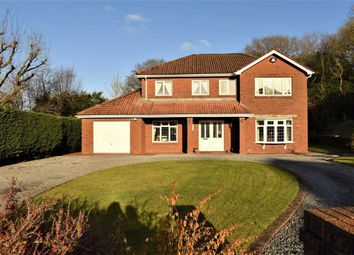 Thumbnail 4 bedroom detached house for sale in Clos Llwynallt, Alltwen, Pontardawe, Swansea