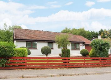 Thumbnail 3 bedroom detached bungalow for sale in 4 Birch Drive, Maryburgh, Dingwall