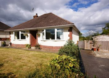 Thumbnail 2 bed detached bungalow for sale in Wareham Road, Corfe Mullen, Wimborne