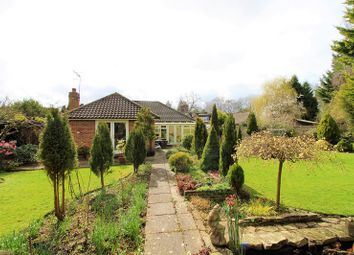 Thumbnail 3 bed bungalow for sale in Meath Green Lane, Horley, Surrey.