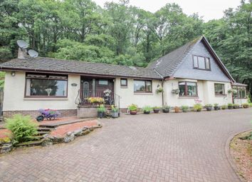 Thumbnail 5 bedroom detached bungalow for sale in Blacketts Wood, Lochard Road, Aberfoyle