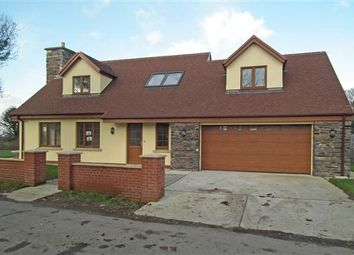 Thumbnail 4 bed detached house for sale in New Bungalow, Ballacaley Road, Sulby