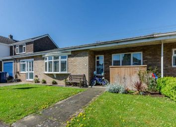 Thumbnail 3 bed bungalow for sale in Barrington, Cambridge, Cambridgeshire